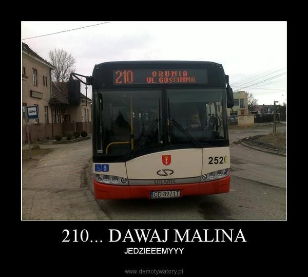malina3