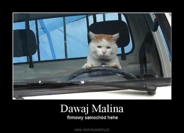 malina4