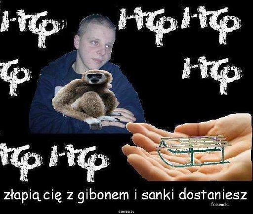 beka z rapsow8