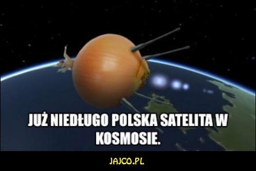 cebula3