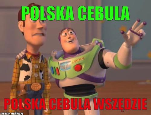 cebula5