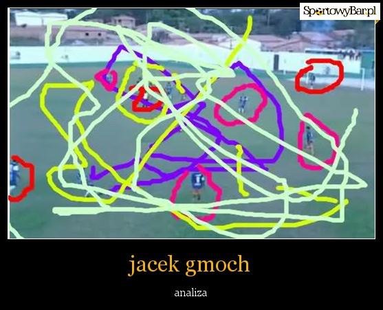 gmoch1