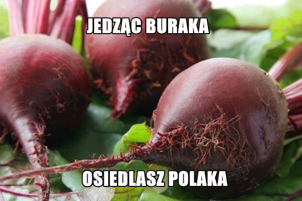 kebab8