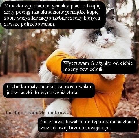 miau1