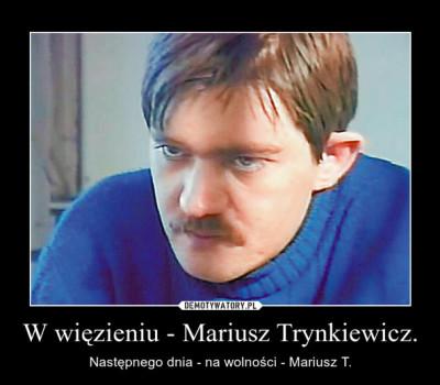 trynkiewicz6